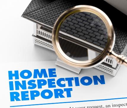 Termite Inspection Report