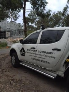 Pre-Construction Termite Barrier Coomera