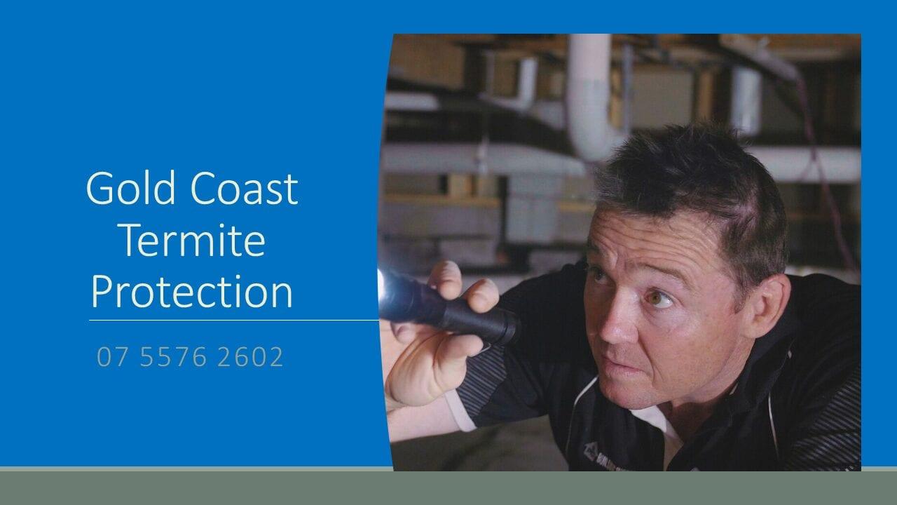 Termite Inspection Expert